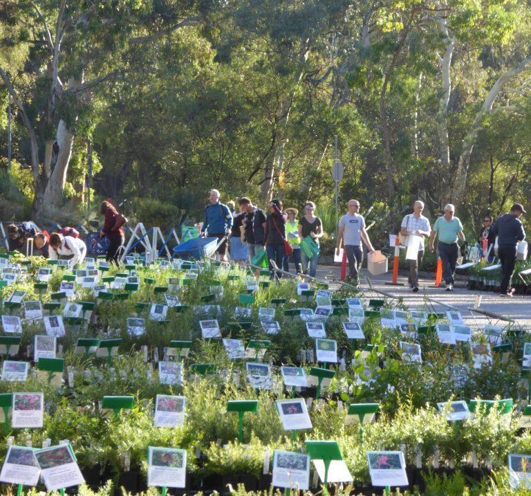 Plant Sale 27 March at the ANBG, Covid plan and plant list