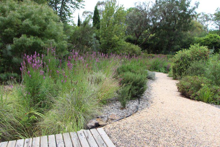 Garden Design: Make a Site Plan